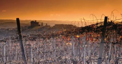 Food & Wine Tourism Forum……..