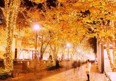 Il Natale scintillante di Tokyo