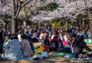 A TOKYO INAUGURANO DUE NUOVI QUARTIERI DI TENDENZA