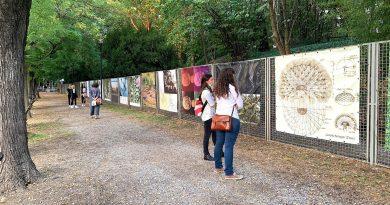 L'ERBARIO IN VIAGGIO                     Mostra visitabile fino al 3 ottobre 2021             Modena, Orto Botanico